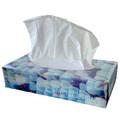 Facial Tissues Exclusiva 2lgs